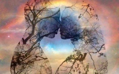 Far crescere l'albero dell'amore.